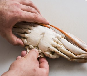 How To Cook, Clean and Pick Crab