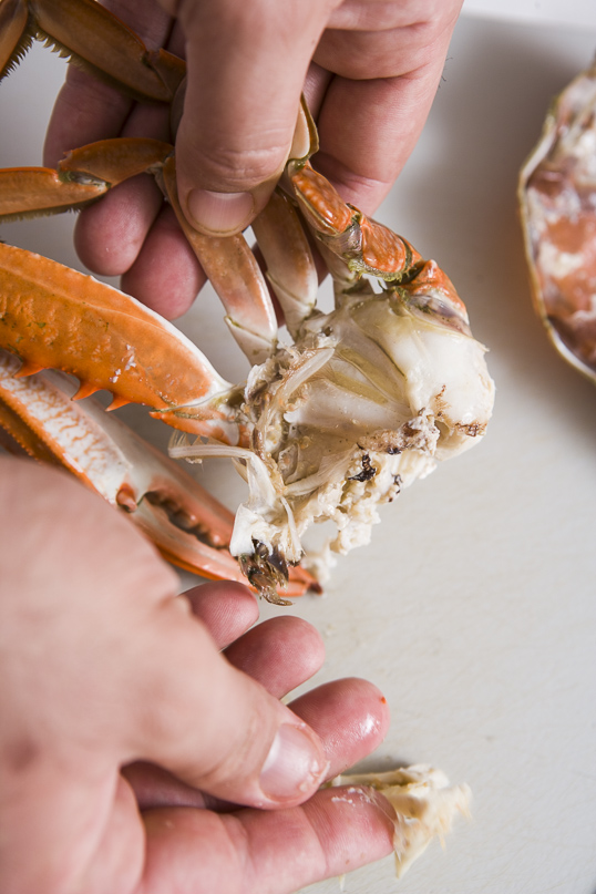 The cleaned crab half.