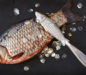 Remove scales from fish
